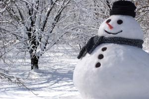 winter-snowman-pic.jpg